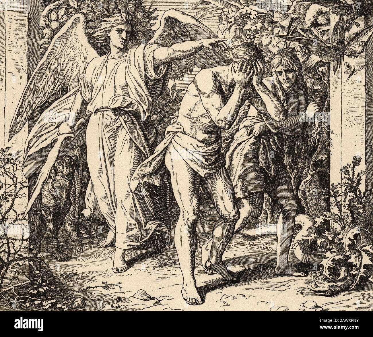 Genesis. God expels Adam and Eve from the Garden of Eden to work the land. Sacred biblical history Old Testament. Old engraving Stock Photo