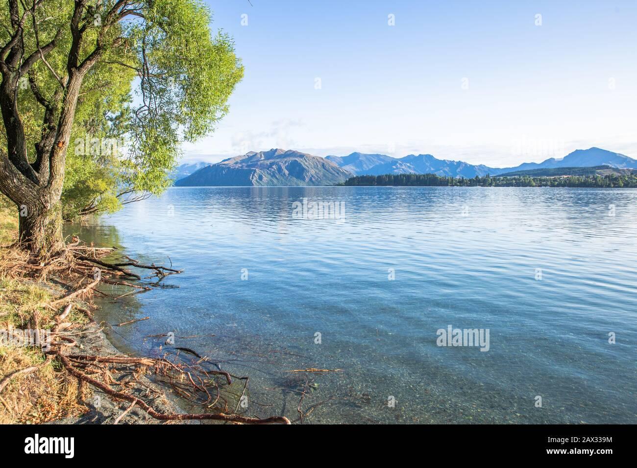Early morning lake sunrise with golden light. Blue sky and water. Lake Wanaka New Zealand, Popular travel destination. Stock Photo