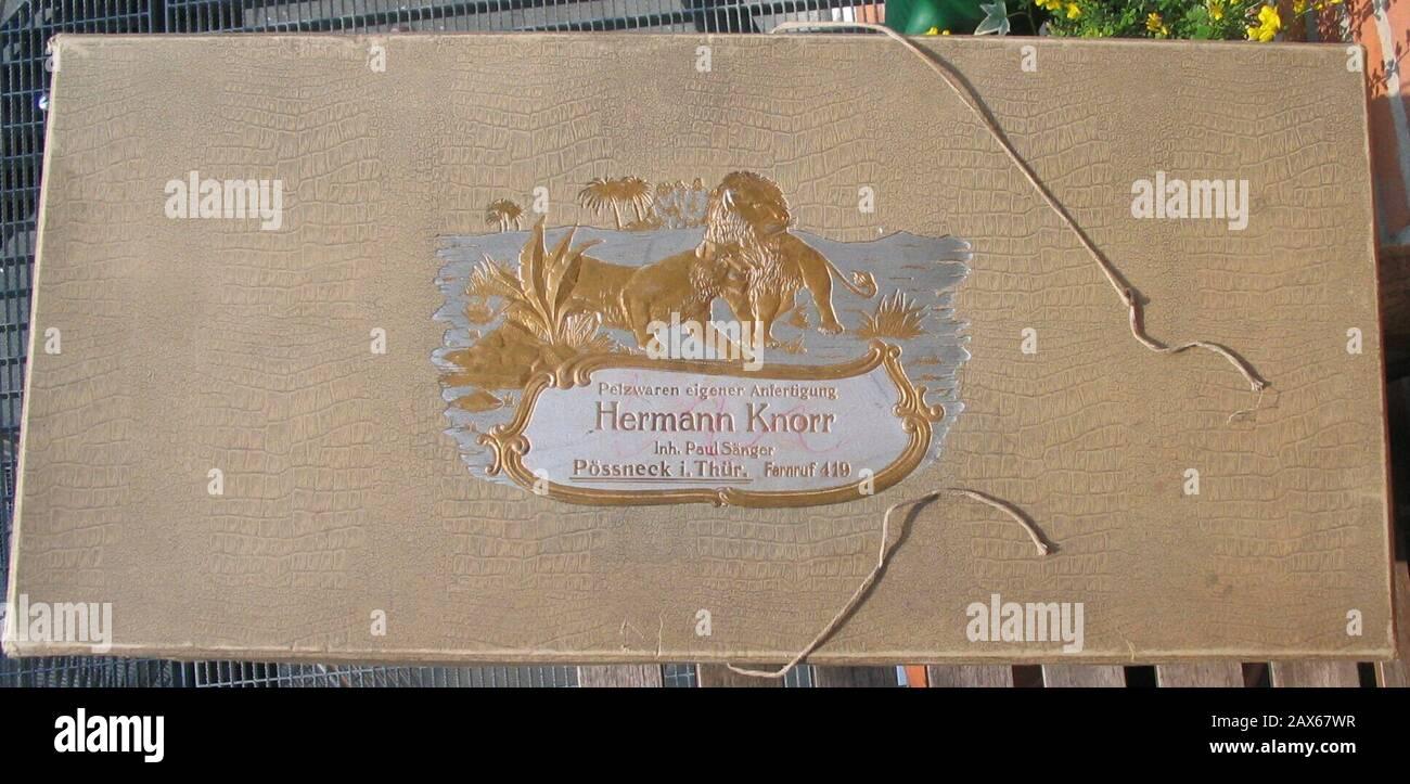"""""""Deutsch: Karton eines Thüringer Pelzgeschäfts zur Verpackung und mottengeschützter Verwahrung von Pelzkleinteilen (ca. 1. Drittel 1900) Hermann Knorr, Inh. Paul Sänger, Pössneck i. Thür. (Thüringen) Pelzwaren eigener Anfertigung Krokodruck und erhabene Goldprägung, Löwenpärchen vor Palmen, Bindebänder Karton 65 x 30 x 7,5 cm Aus der Sammlung Kuhn   English: Furrier's box; March 2010; Own work; --Kürschner (talk) 17:01, 27 April 2010 (UTC); """" Stock Photo"""