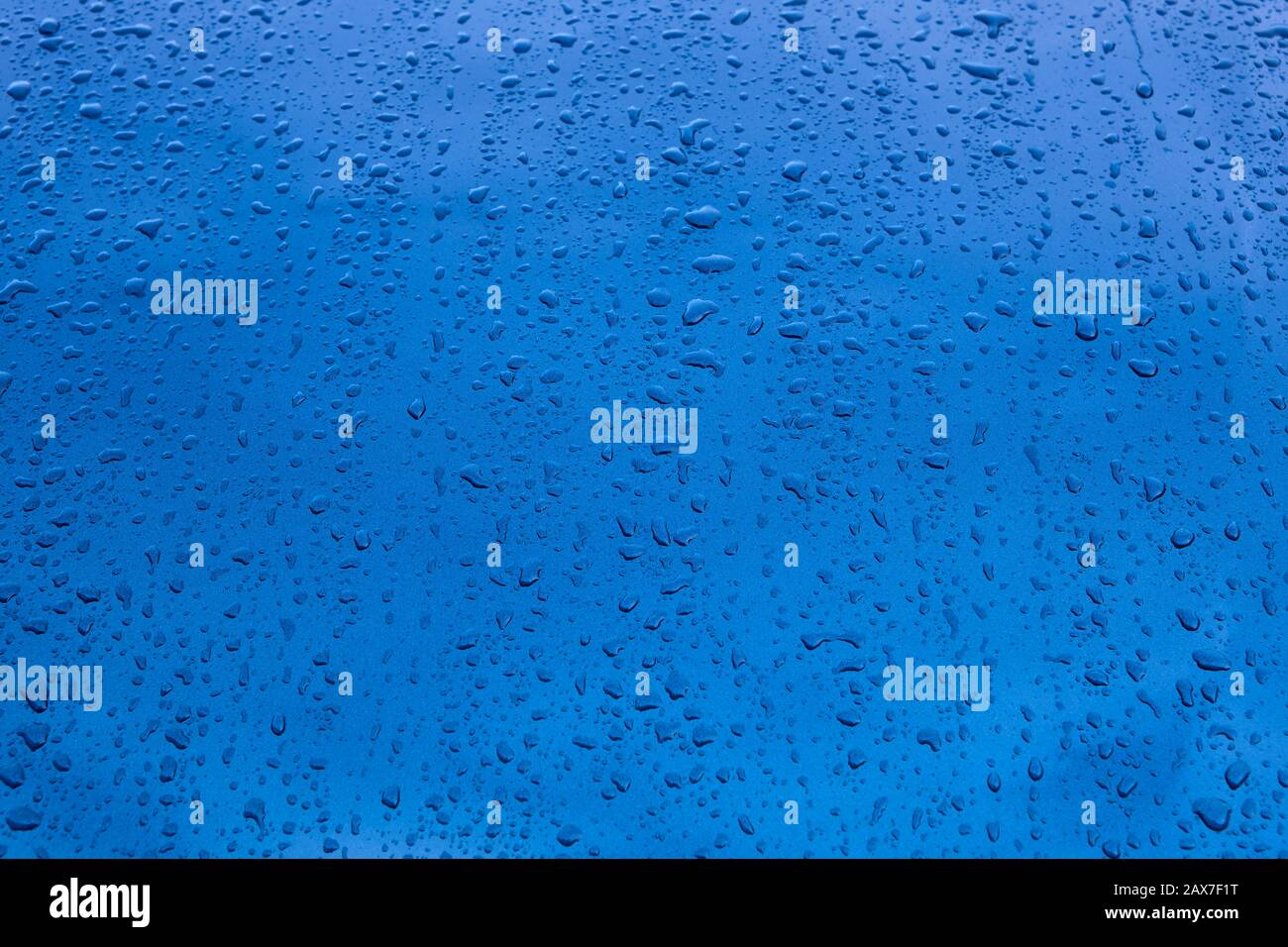 Rain drops on a blue vehicle bodywork. Wet textured background Stock Photo