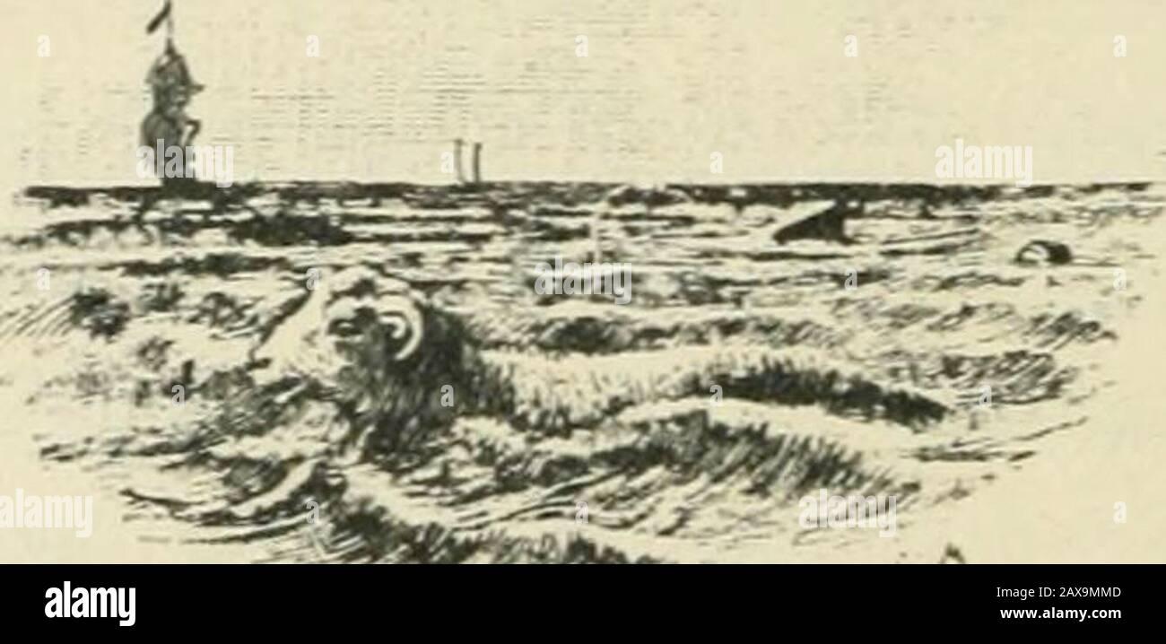 Candide; ou, L'optimisme; . itaine(lu vaisseau submergeant était espagnol, et que celui duvaisseau submergé était un pirate hollandais : cétaitcelui-là même qui avait volé Candide. Les richessesimmenses dont ce scélérat sétait emparé furent ense-velies avec lui dans la mer, et il ny eut quun moutonde sauvé. » — Vous voyez, dit Candide à Martin, que lecrime est puni quelquefois; ce coquin de patron hollan-dais a eu le sort quil méritait. — Oui, dit Martin, maisfallail-il que les passagers qui étaient sur son vaisseaupérissent aussi? Dieu a puni ce frippn; le diable a noyéles autresT» Cependant Stock Photo