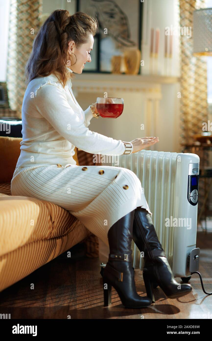 Smiling Elegant 40 Years Old Woman In White Sweater And Skirt