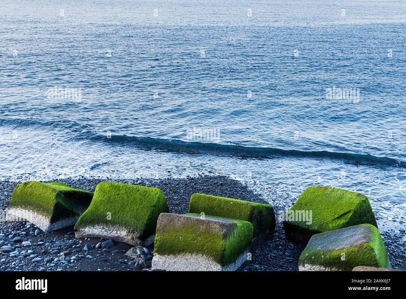 Green algae covered concrete blocks on a stony beach in Playa San Juan, Tenerife, Canary Islands, Spain Stock Photo