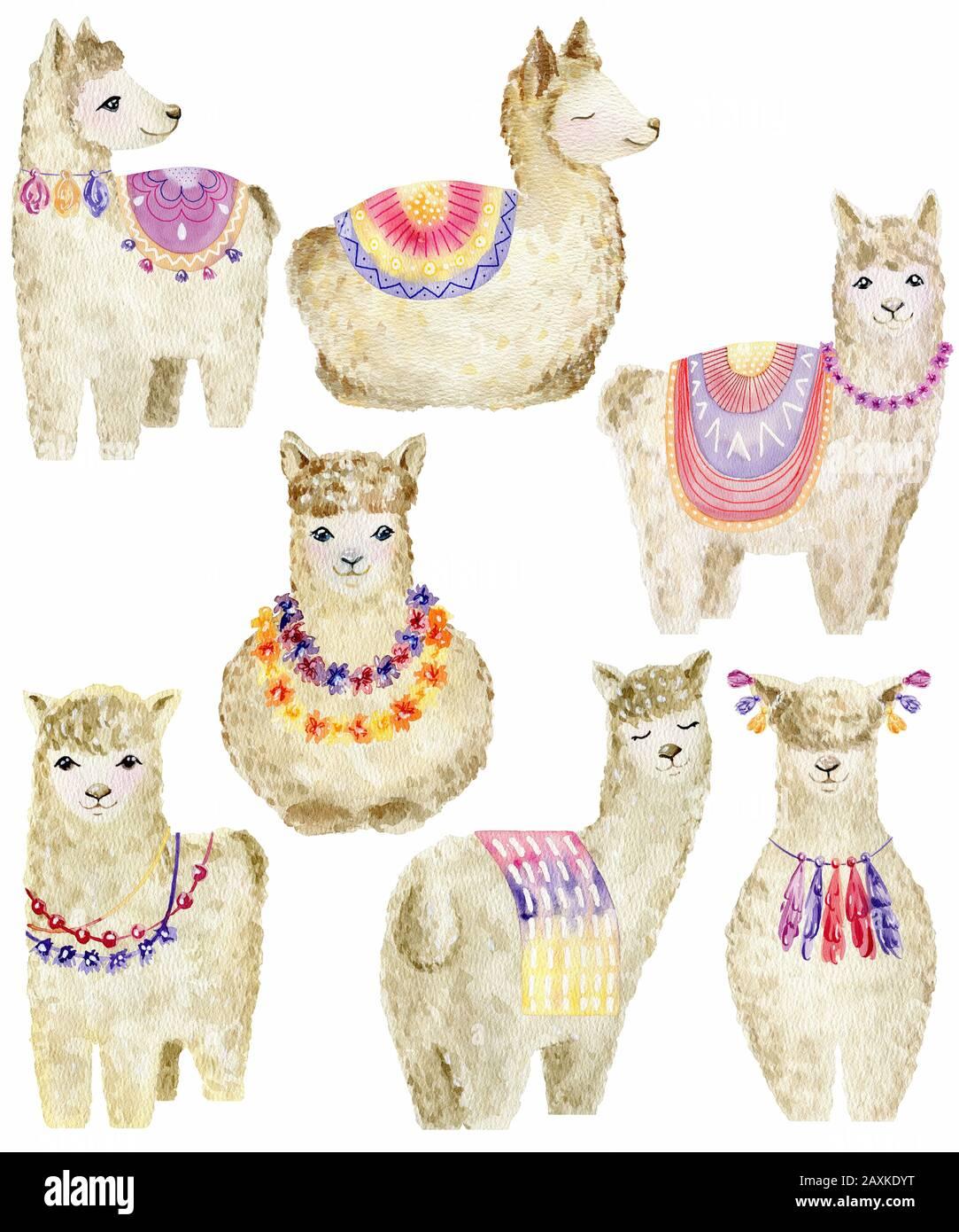 Alpaca//llama family decal set in 9 colors