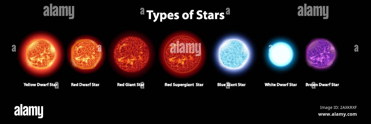 Diagram showing different types of stars illustration Stock Vector