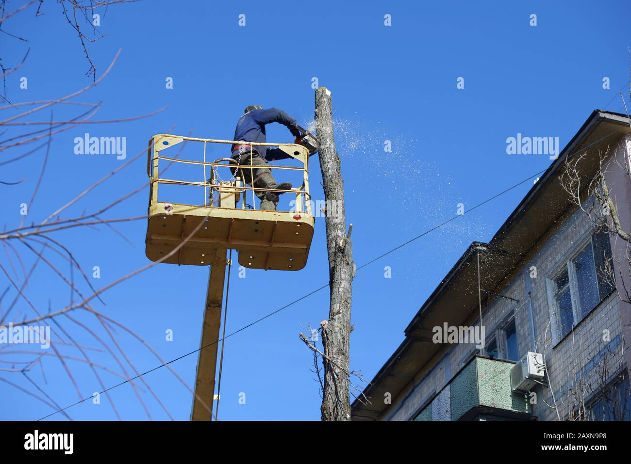 Municipal worker cutting dead standing tree with chainsaw using truck-mounted lift Stock Photo