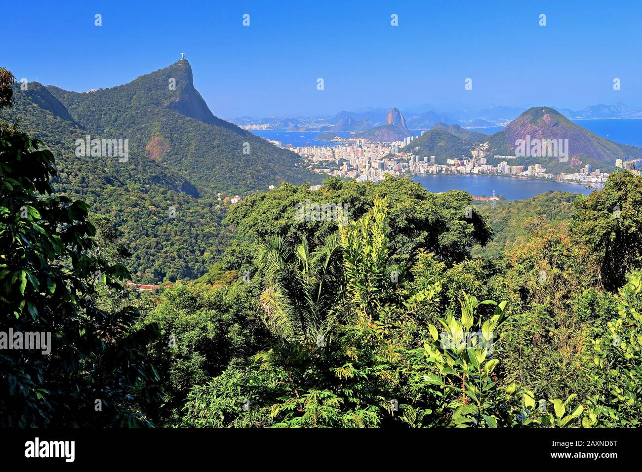 Vista Chinesa in the Tijuca national park with view over the rainforest to the Corcovado 710 m and Sugar Loaf Mountain 396 m, Rio de Janeiro, Brazil Stock Photo