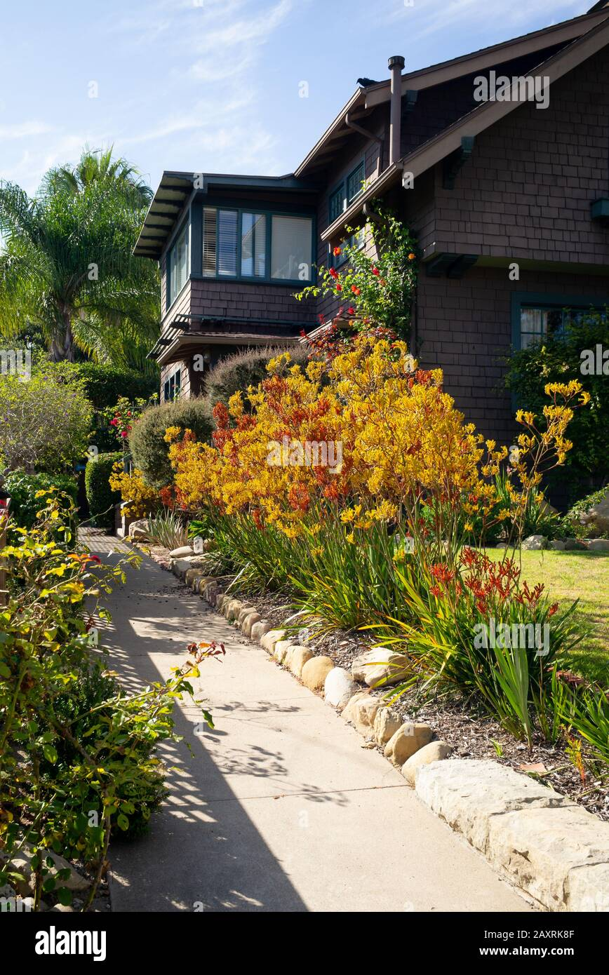A Gorgeous Display Of Color From Native California Planting Exemplifies Excellent Landscape Design Ideas And Elements For The Home Stock Photo Alamy