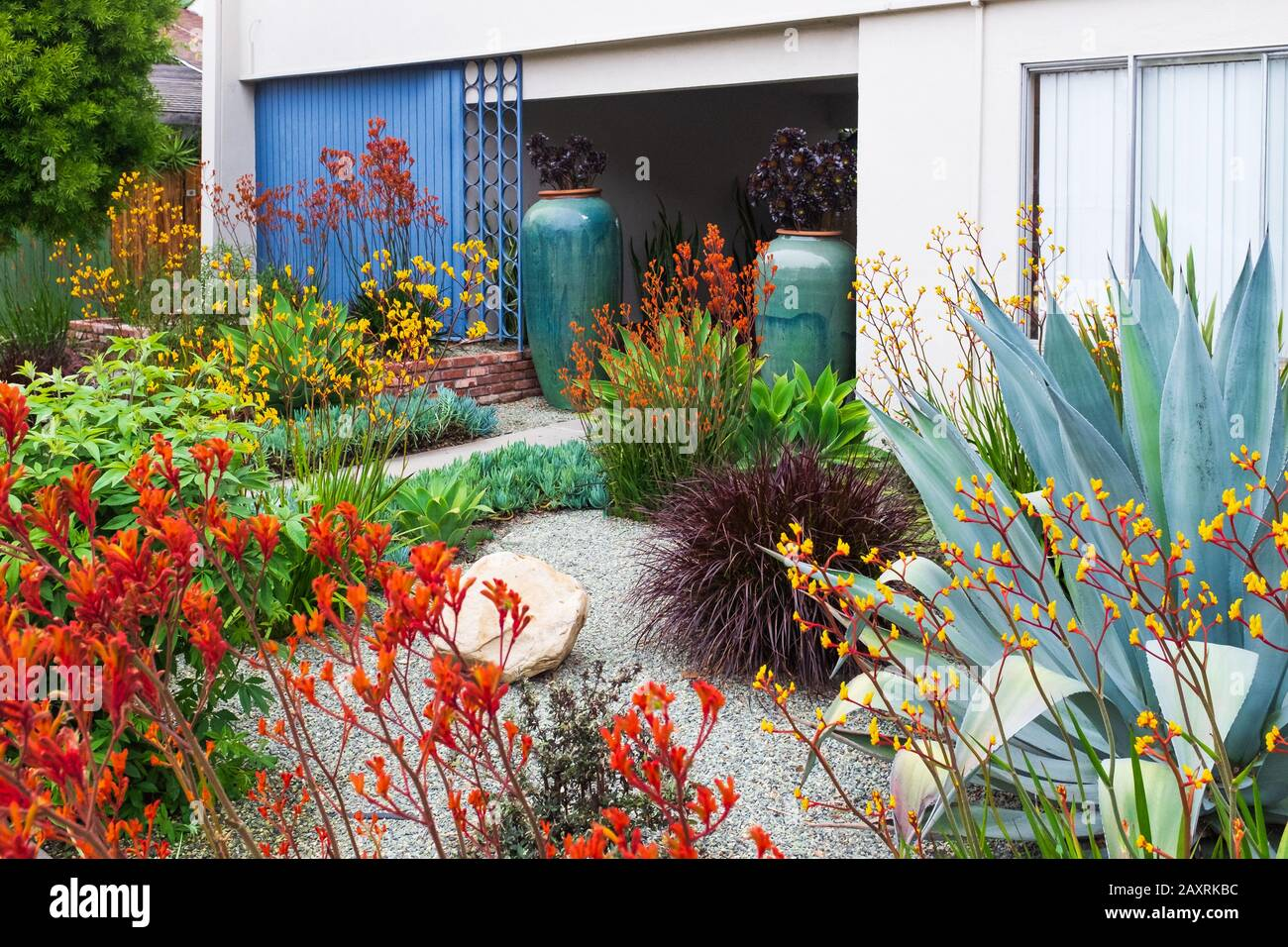 Southern California Garden And Landscape Design For An Apartment