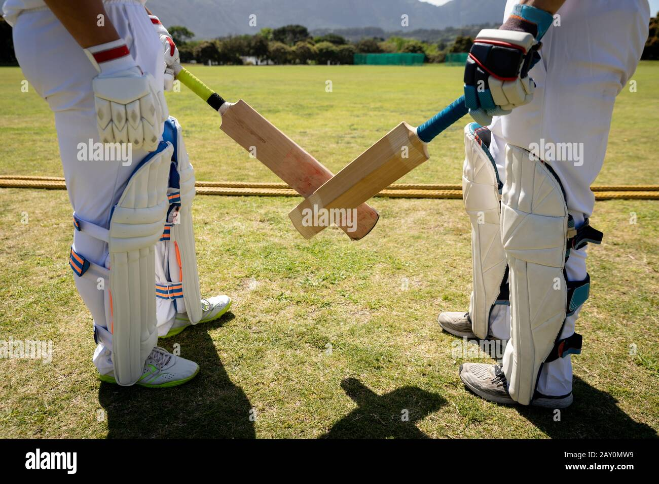 Cricket players face to face on a pitch Stock Photo