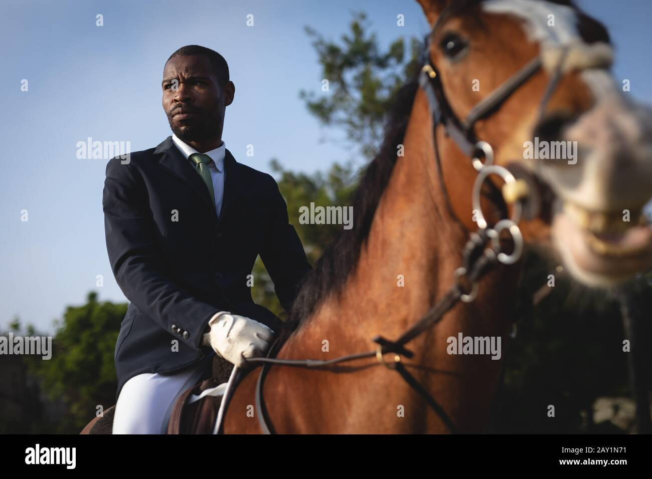 Man Riding His Dressage Horse On A Sunny Day Stock Photo Alamy