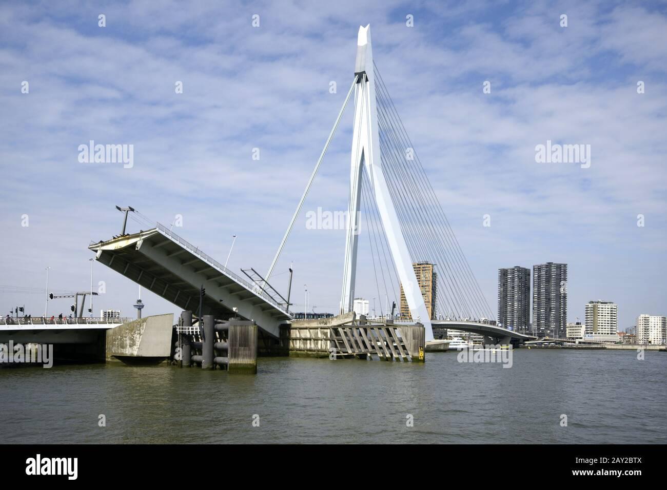 Erasmusbridge over the Nieuwe Maas in Rotterdam, N Stock Photo