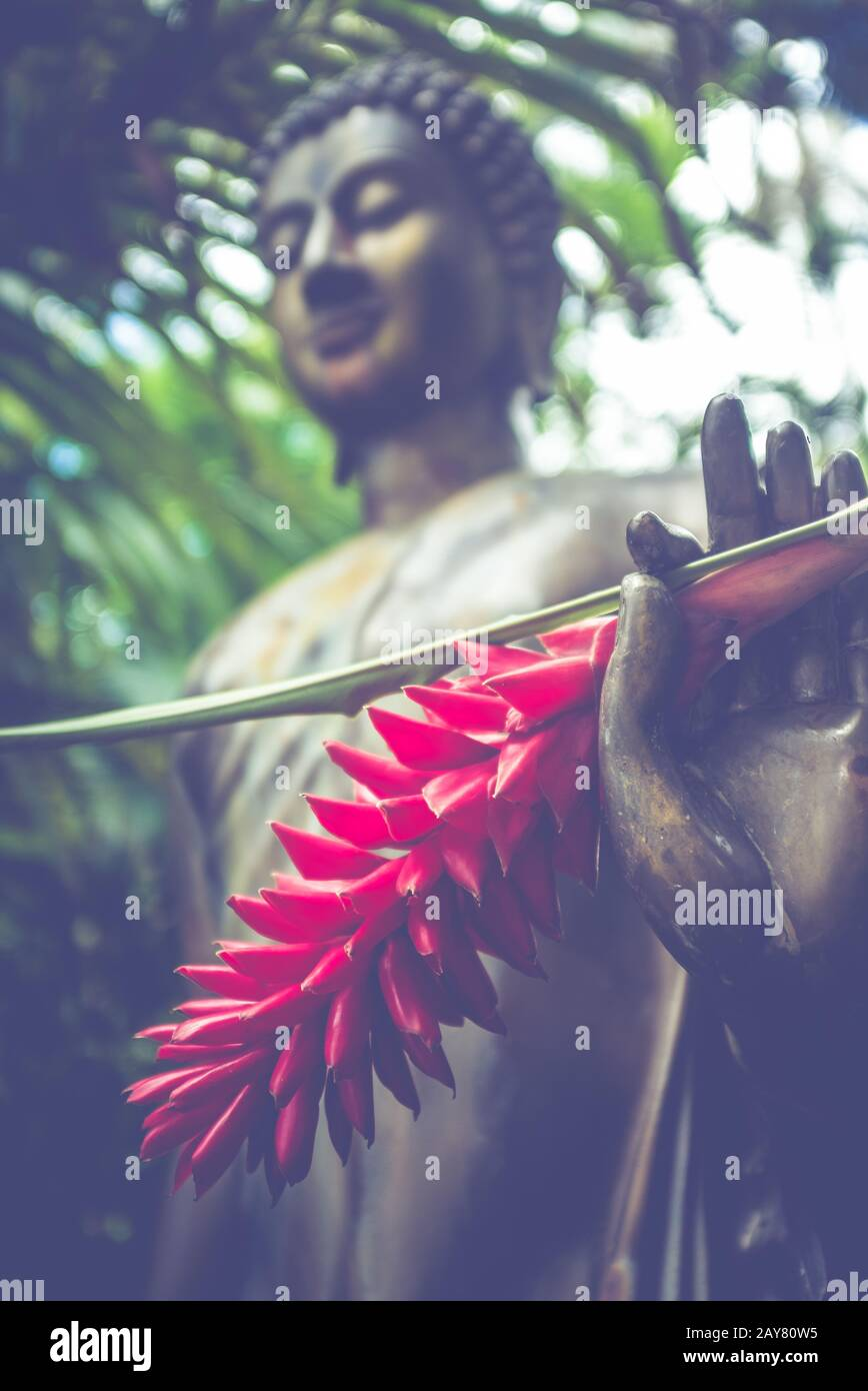 Jungle Buddha Statue With A Red Ginger Flower In His Hand Stock Photo