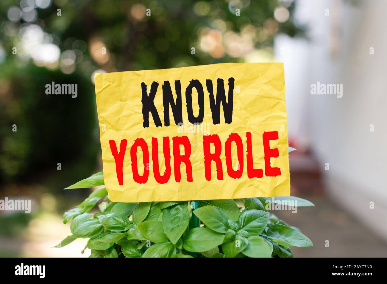 Word writing text Know Your Role. Business concept for end acting outside who you actually are Play your position Plain empty pa Stock Photo