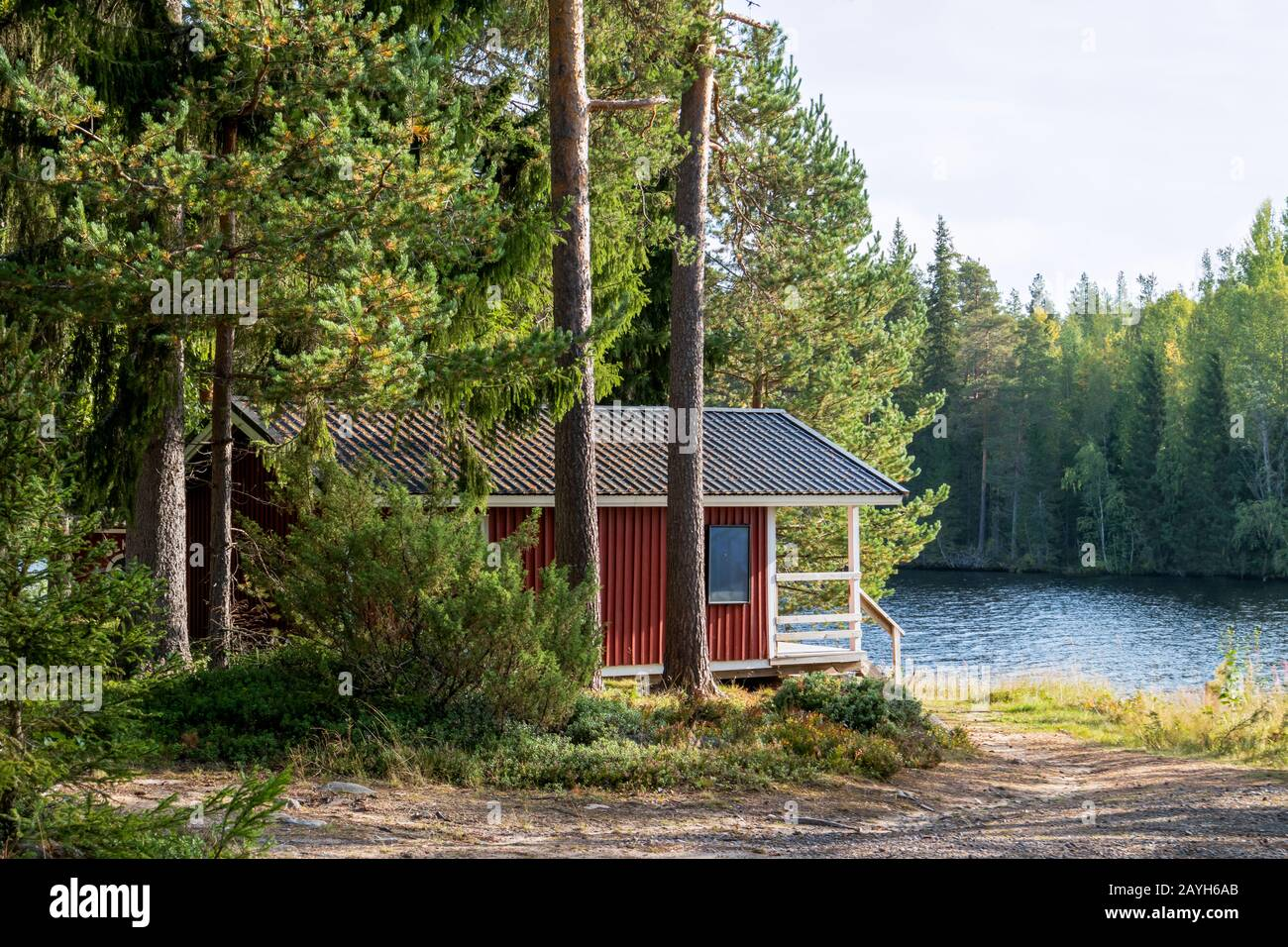Red wooden finnish traditional cabins cottages in green pine forest near river. Rural architecture of northern Europe. Wooden houses in camping on sun Stock Photo