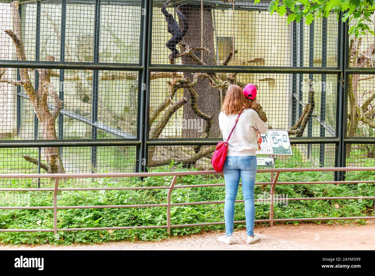 18 MAY 2018, BERLIN, GERMANY: young child kid with mother looking at monkey in the Zoo Stock Photo