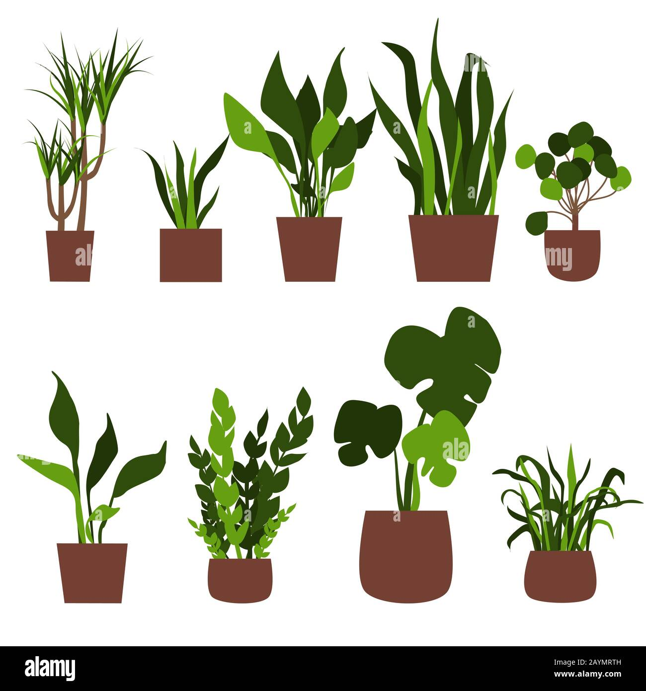 Houseplant Vector Vectors High Resolution Stock Photography And Images Alamy