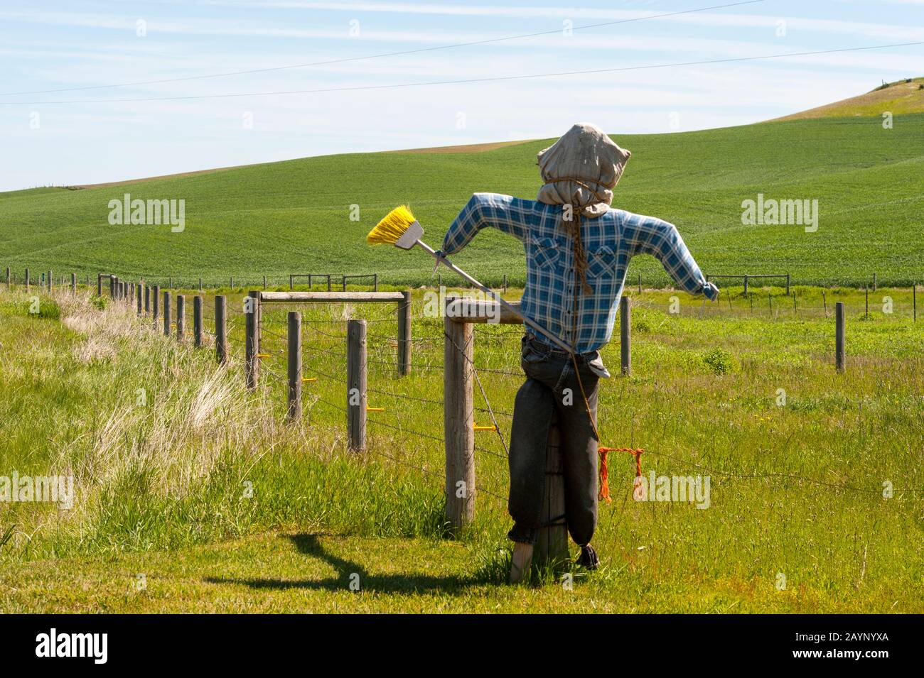 scarecrow on farm in the palouse near pullman eastern washington state usa stock photo alamy alamy