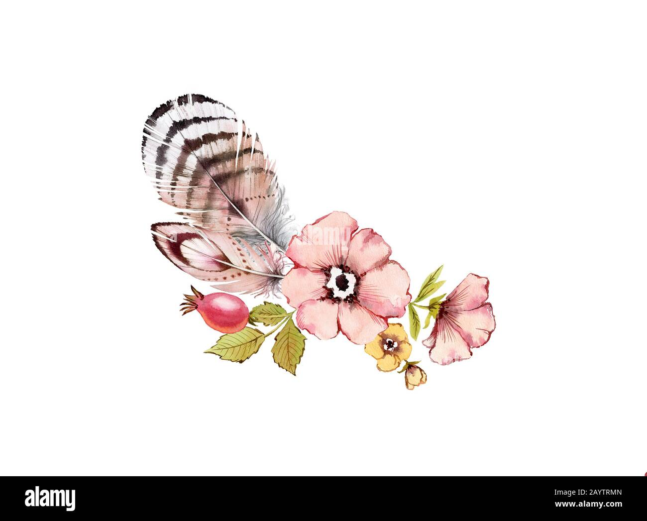 Watercolor Vintage Floral Composition Dusty Pink Flowers Bouquet Rose Hip Briar Leaves Feathers Isolated On White Background Hand Painted Stock Photo Alamy