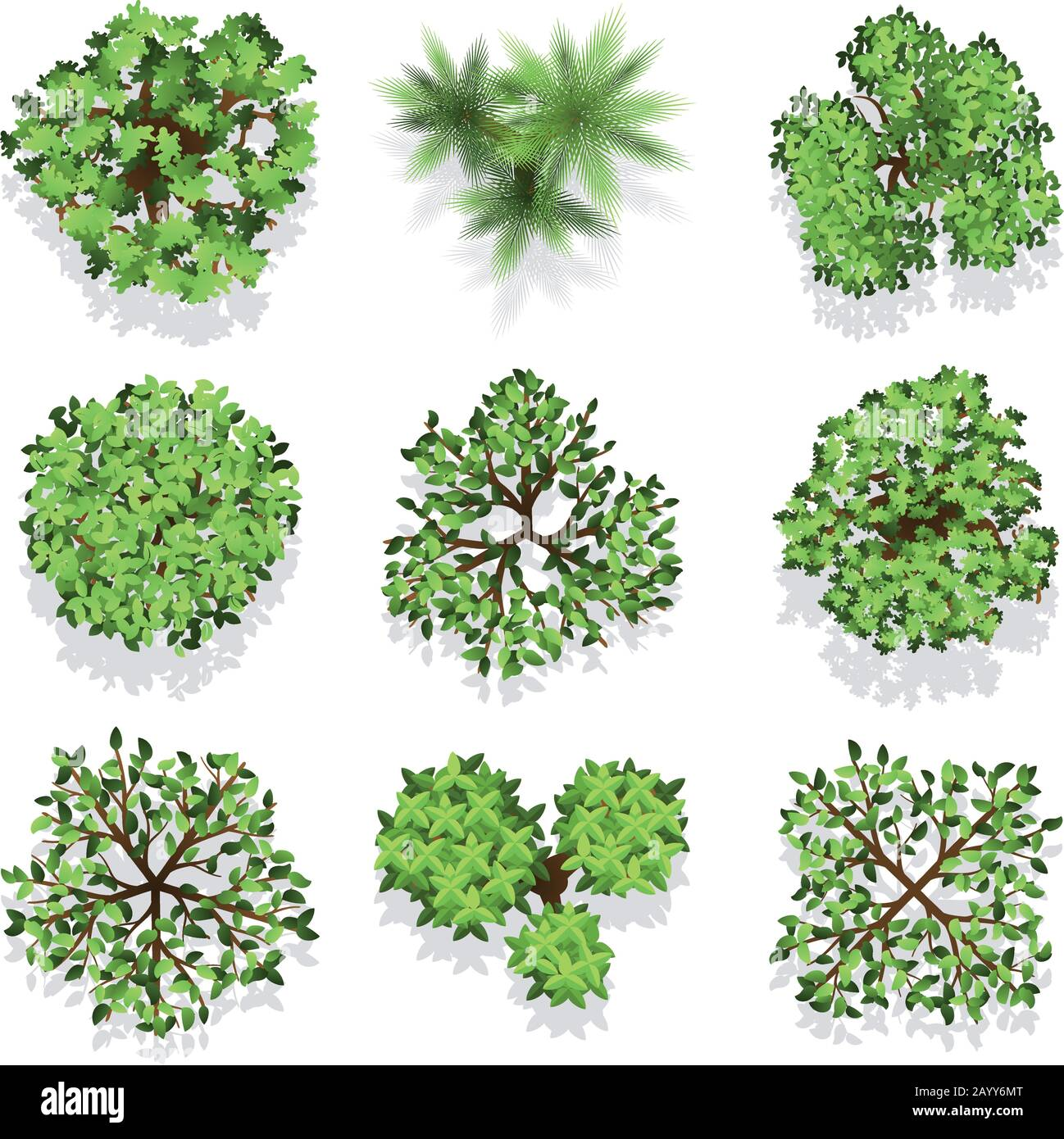 Trees Top View Vector Set For Landscape Design And Map Green Tree