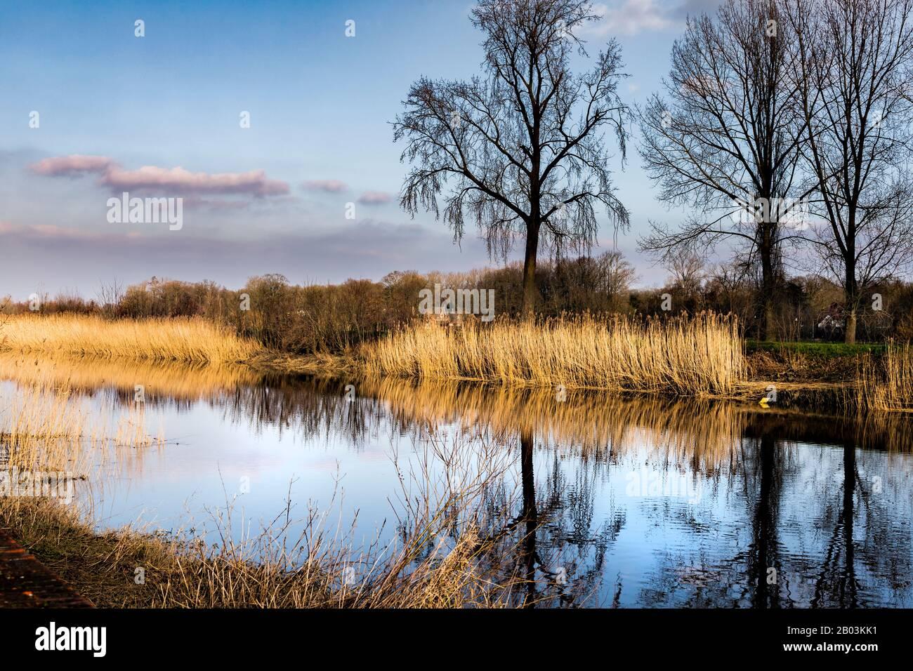 Gentbrugge, Belgium (06-2020): Along the river Scheldt Stock Photo