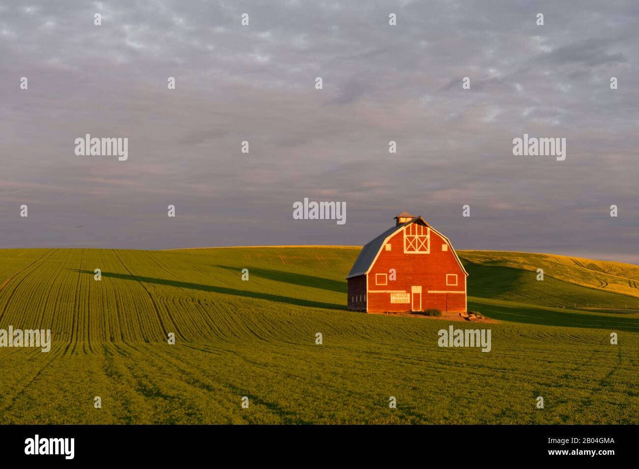 the palouse barn outside of uniontown in whitman county in the palouse near pullman washington state usa stock photo alamy alamy