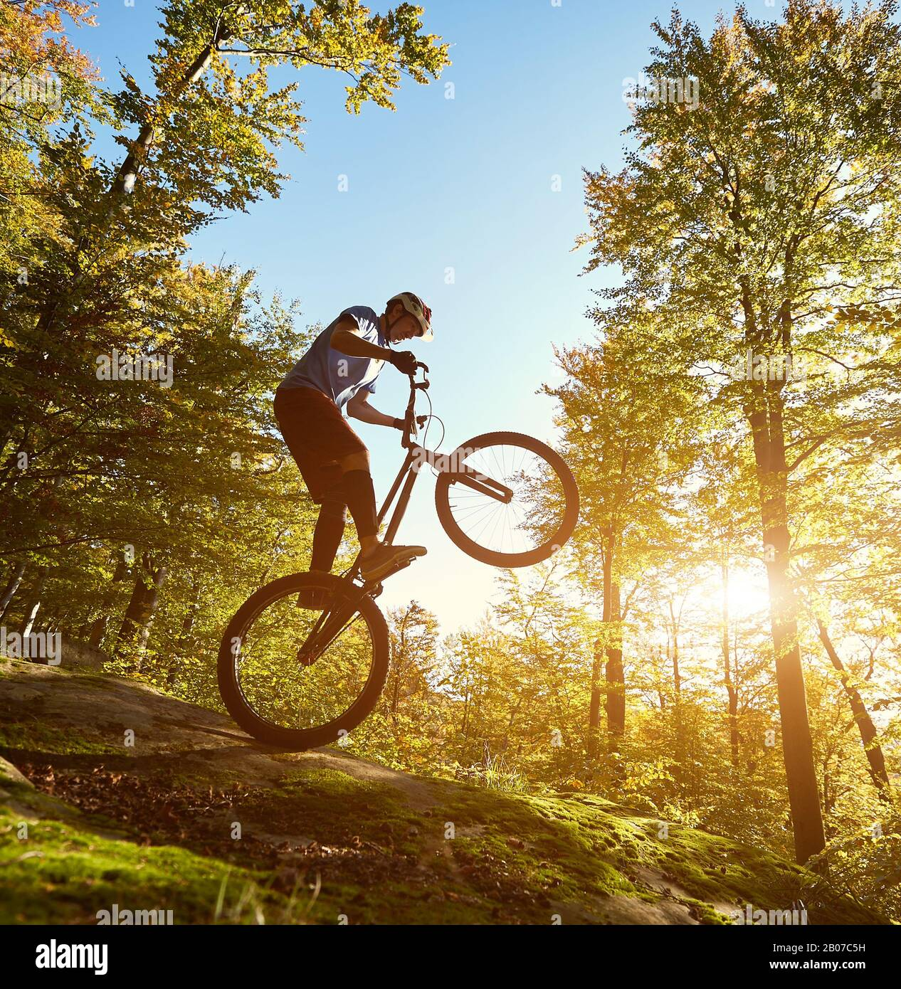 Professional sportsman cyclist balancing on back wheel on trial bicycle, male biker making acrobatic trick on the edge of big boulder in the forest on summer sunny evening Stock Photo