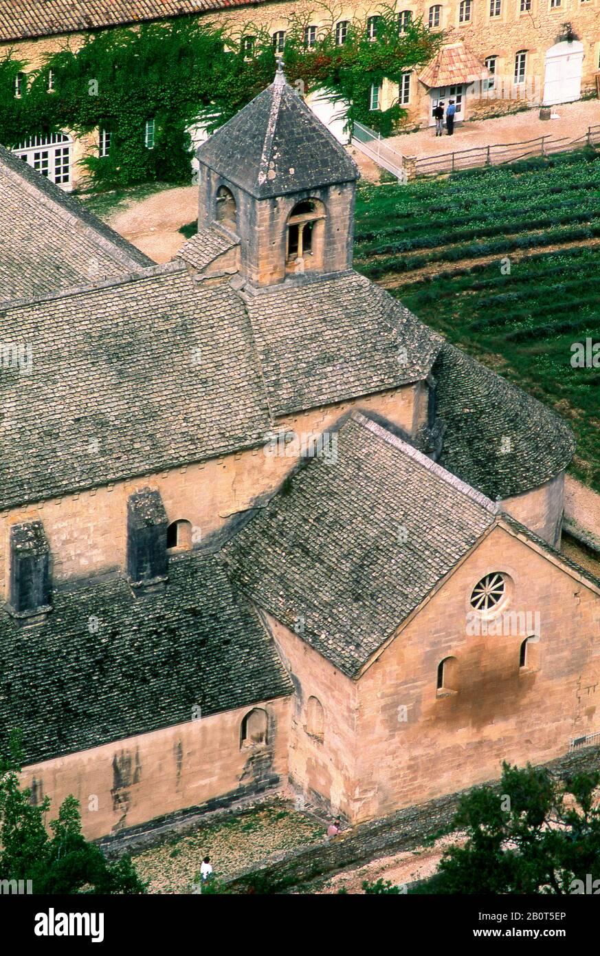 View of Cistercian abbey  Notre-Dame de Senanque, Vaucluse, Provence, Provence-Alpes-Côte d'Azur, France, Europe Stock Photo
