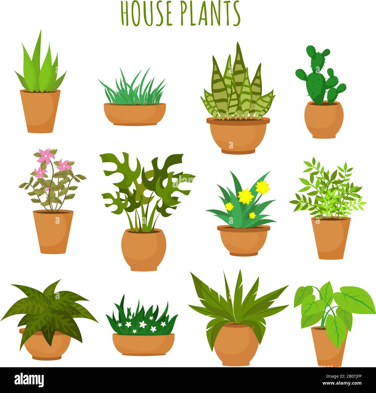 Indoor House Green Plants And Flowers Isolated On White Vector Set Green Plants In Pots Illustration Of Green Garden Flower Plant Stock Vector Image Art Alamy