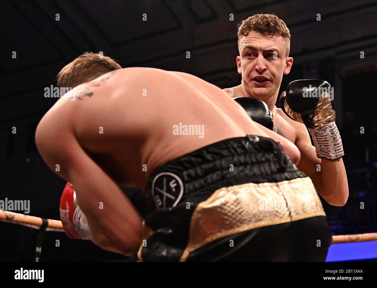 Bethnal Green, United Kingdom. 21st Feb, 2020. Elliot Whale. Preliminary bout 2. MTK Golden contract boxing semi finals. York Hall. Bethnal Green. London. UK. Credit Garry Bowden/Sport in Pictures/Alamy Live News. Credit: Sport In Pictures/Alamy Live News Stock Photo