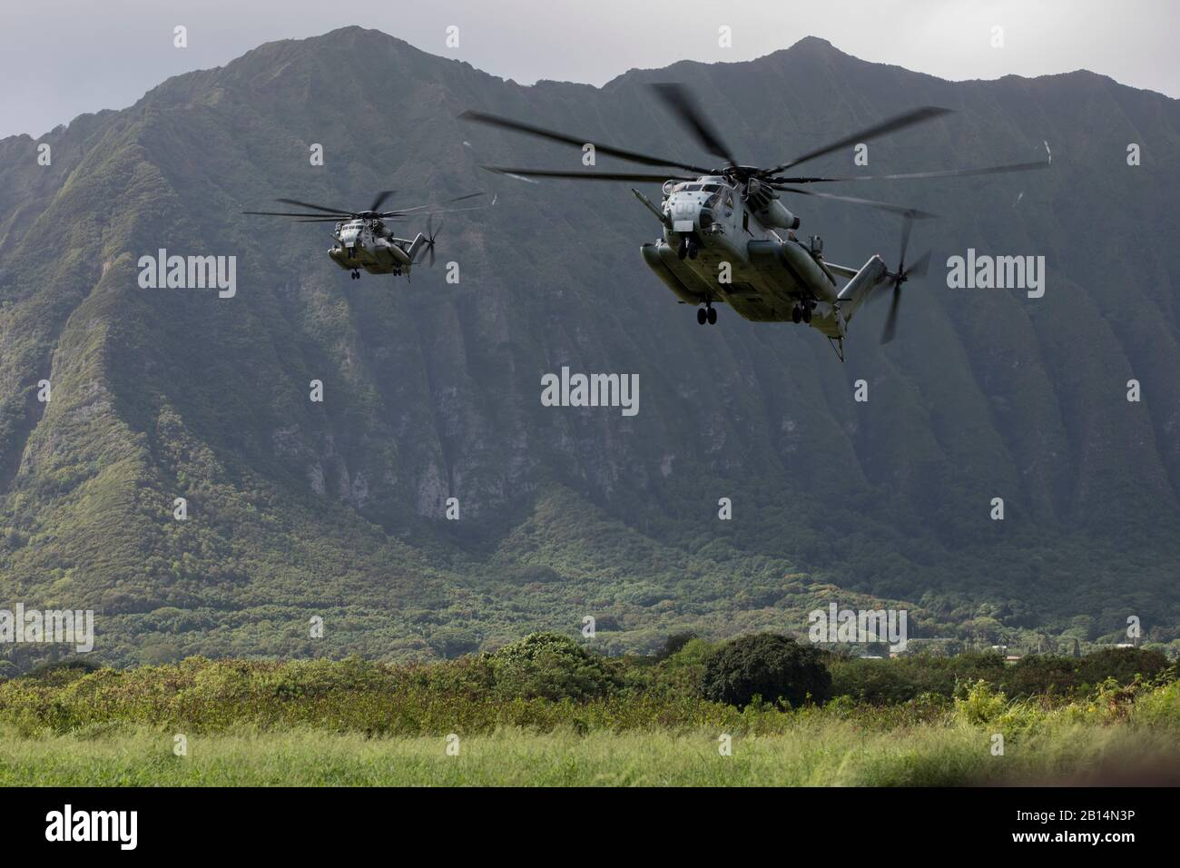 U.S. Marine Corps CH-53E Super Stallions assigned to Marine Heavy Helicopter Squadron (HMH) 463 prepare to land and drop off U.S. Marines with India Company, 3rd Battalion, 3rd Marine Regiment, during a helicopter insertion exercise at Marine Corps Training Area Bellows (MCTAB), Hawaii, Sept. 18, 2018. The company inserted into MCTAB with CH-53E Super Stallions to establish a secure landing zone, patrol over roads and through jungle terrain, and to clear simulated villages of hostiles. (U.S. Marine Corps photo by Sgt. Jesus Sepulveda Torres) Stock Photo