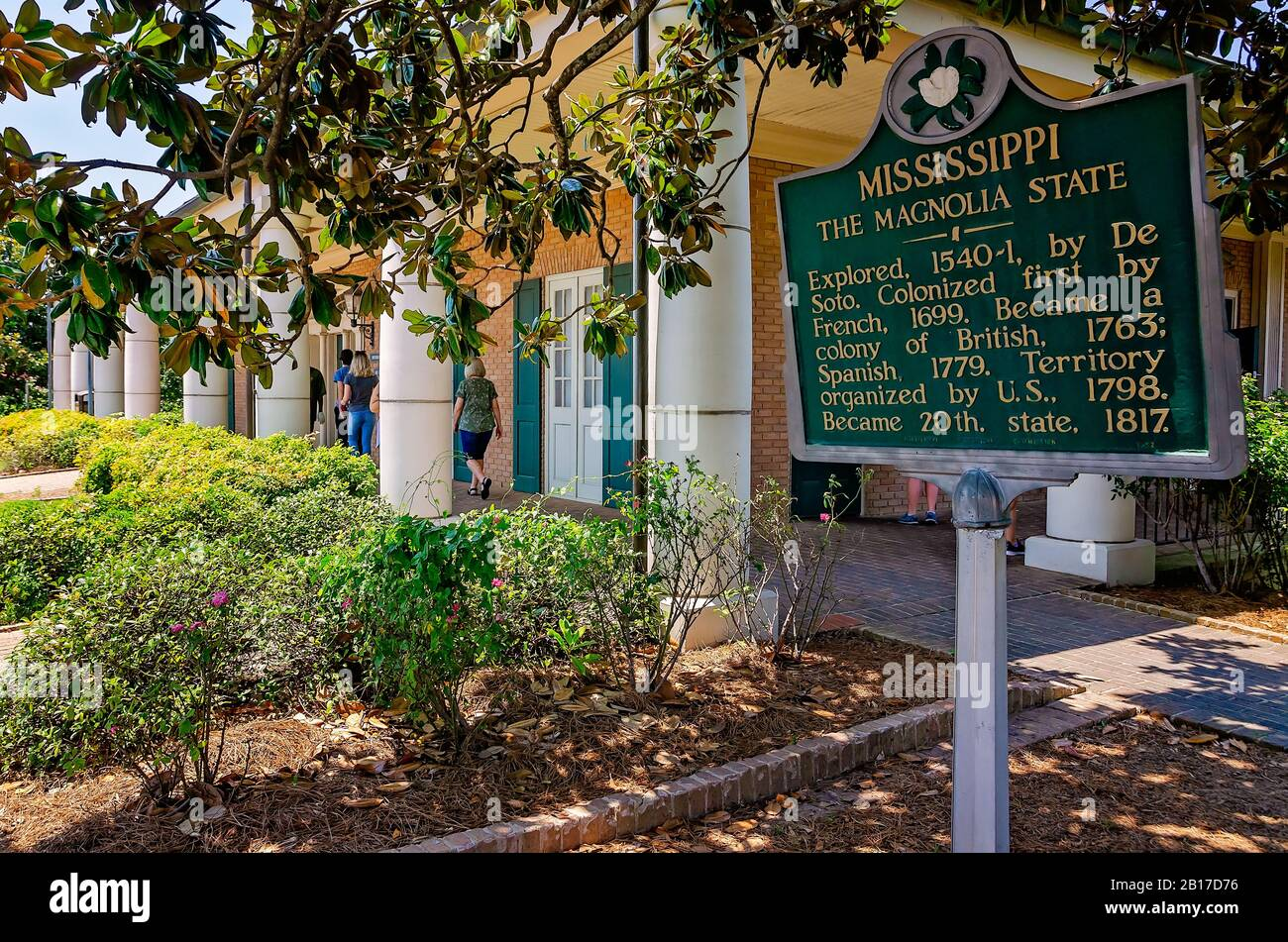Mississippi State Tree High Resolution Stock Photography And Images Alamy