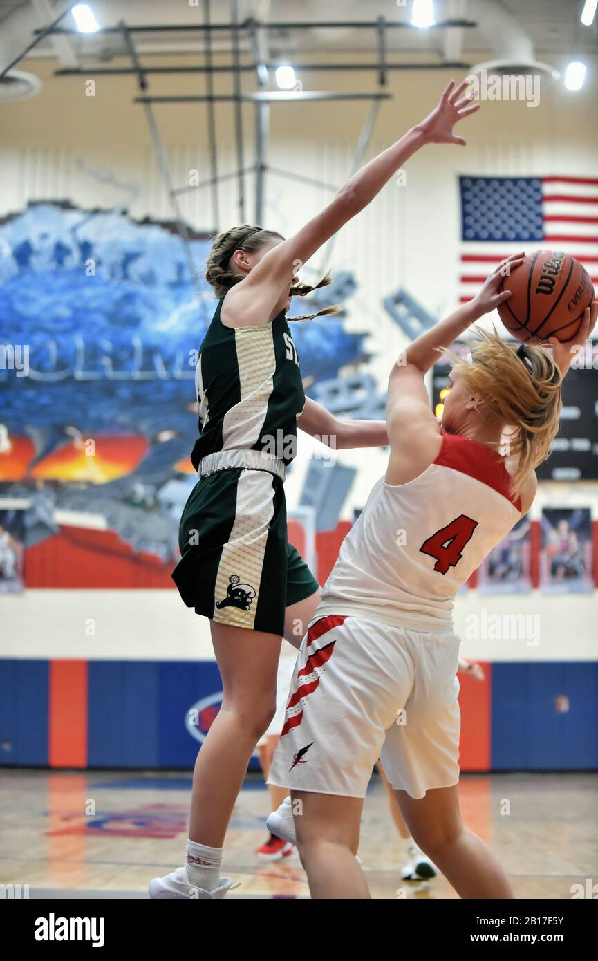 Player having her progress halted by the presence of an opposing defender. USA. Stock Photo