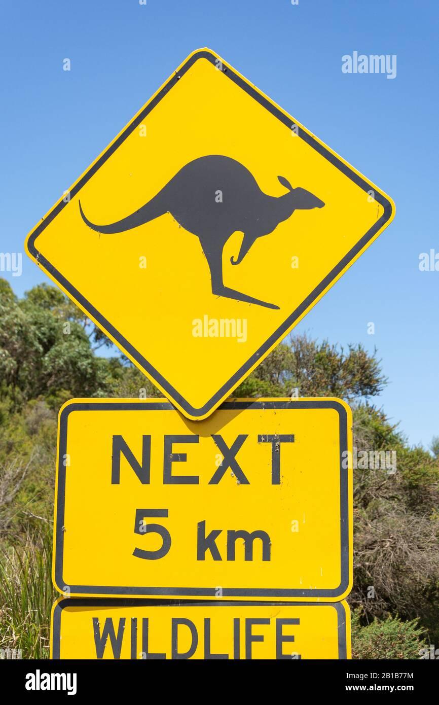 Kangaroo road sign in Great Otway National Park, Barwon South West Region, Victoria, Australia Stock Photo
