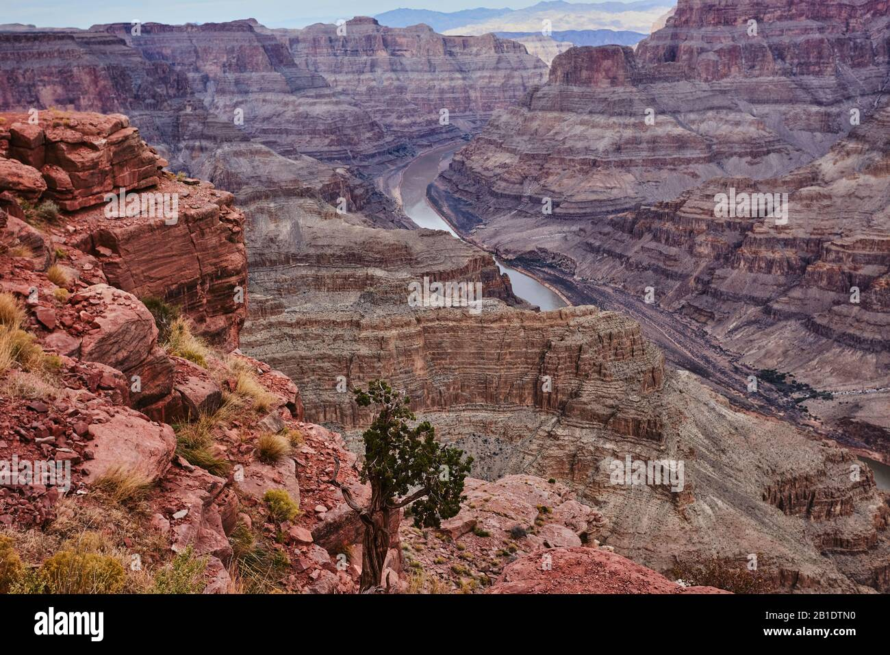 Grand Canyon, USA, West Rim with the Colorado River down below Stock Photo
