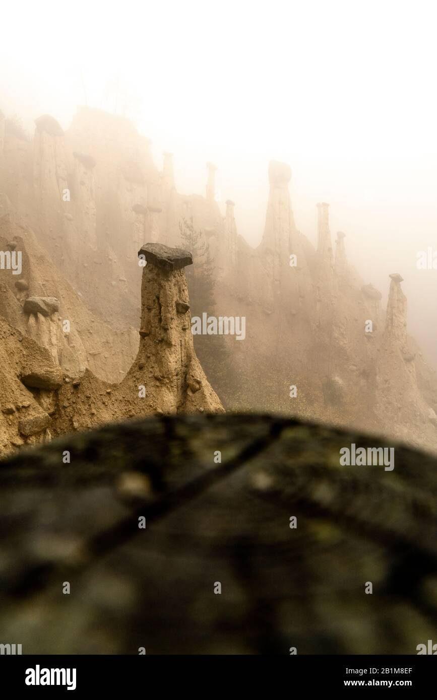 Rock pinnacles of the Earth Pyramids emerging from fog, Perca/Percha, province of Bolzano, South Tyrol, Italy Stock Photo