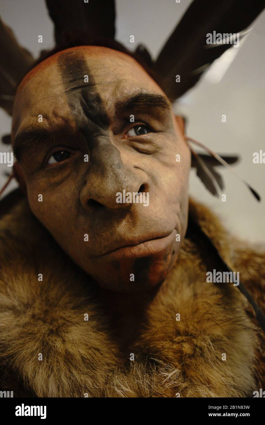 Evolution Of Man High Resolution Stock Photography And Images Alamy