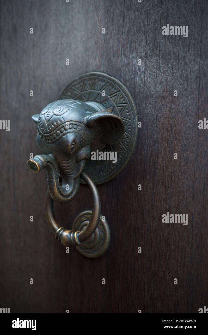 Buddhist Ganesha elephant door knocker on dark wooden door. Ganesha is revered as the remover of obstacles. Welcome home. Shallow DOF. Stock Photo