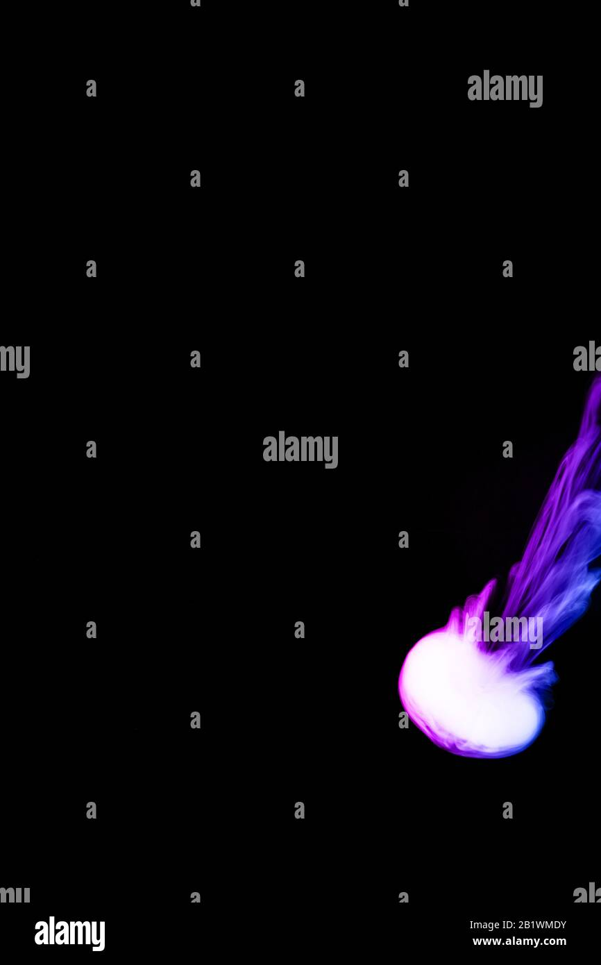Round Colored Ring Of Vape Fog On Black Background Thin Smoke Bicolor Ring Goes Down Blue And Purple Color Steam Vape Culture And No Smoking Direct Stock Photo Alamy
