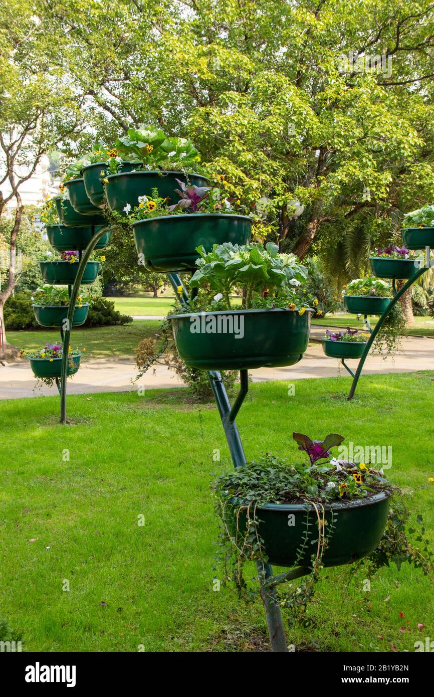 Lots Of Flower Pots In The Park Gardening And Landscape Design