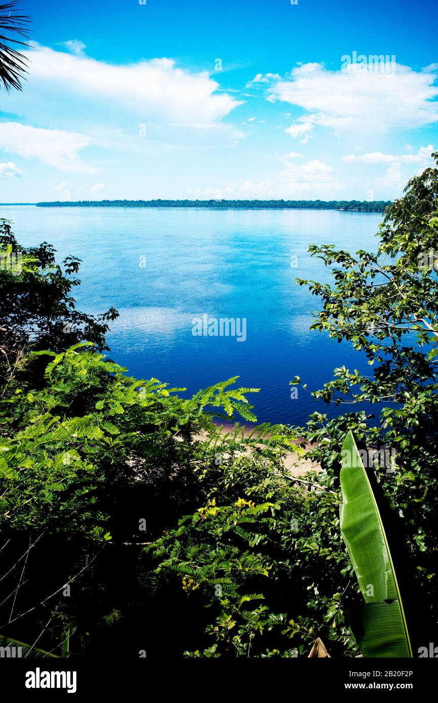 Novo Airão Amazonas fonte: c8.alamy.com