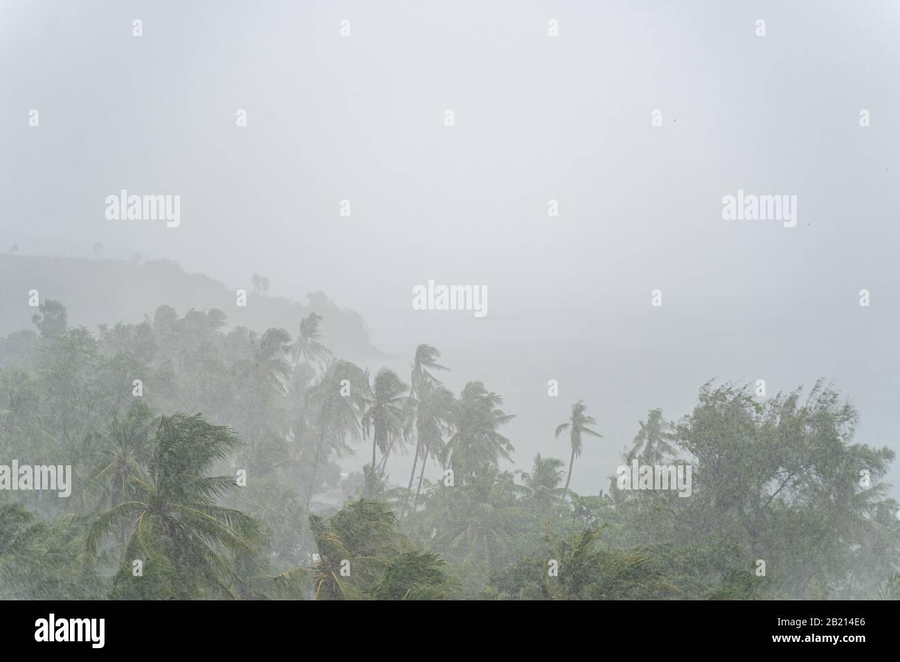 Unpredictable severe storm raging over a rainforest Stock Photo