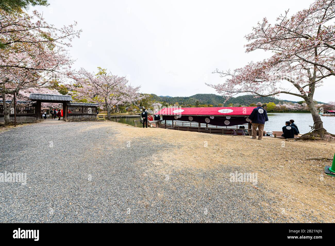 Kyoto, Japan - April 12, 2019: Cherry blossom trees by Osawa-no-Ike lake in spring in Arashiyama area by Daikakuji Temple with red dragon boat Stock Photo