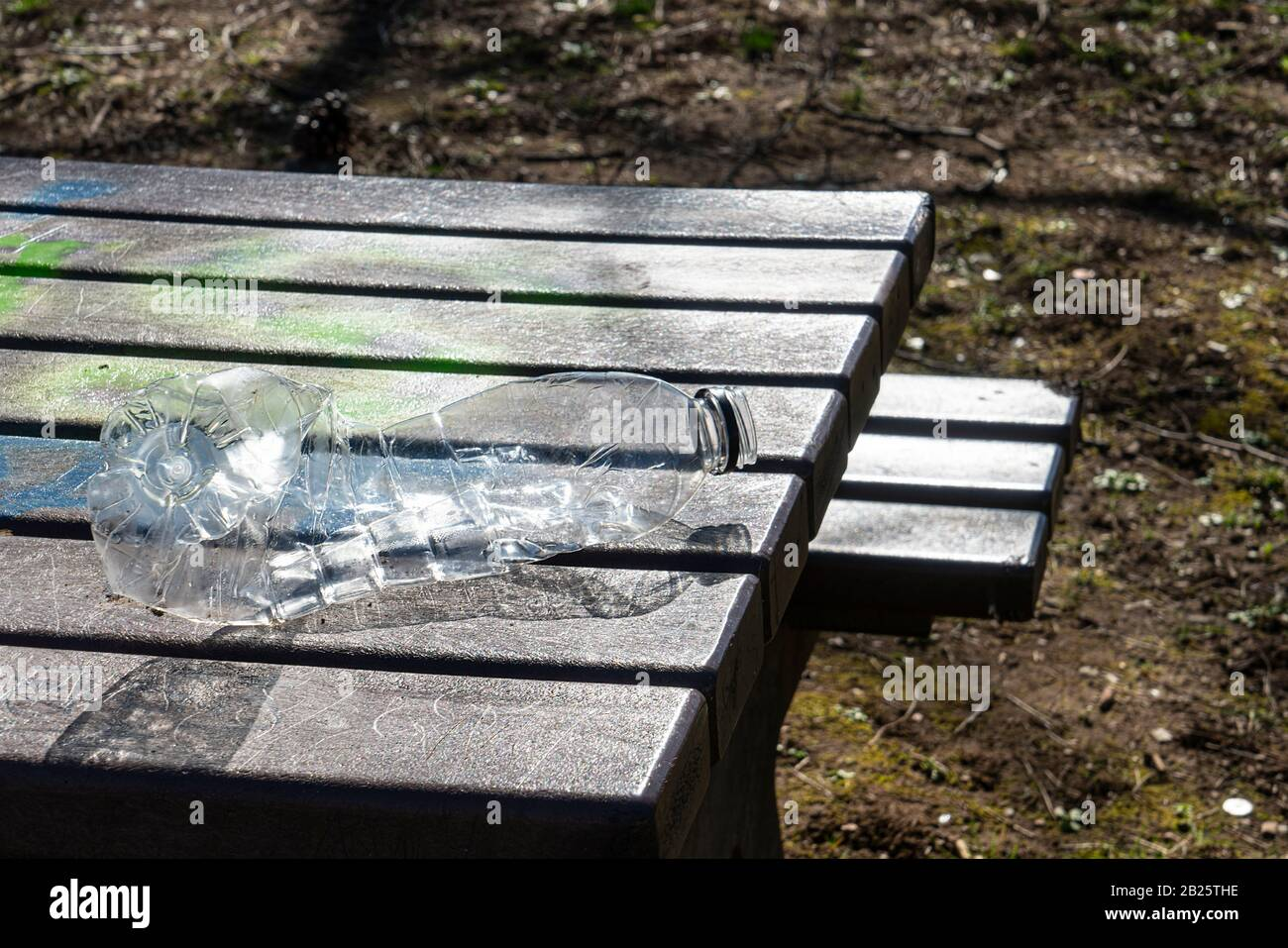 A plastic bottle blown by the wind falls on the grass in the park Stock Photo