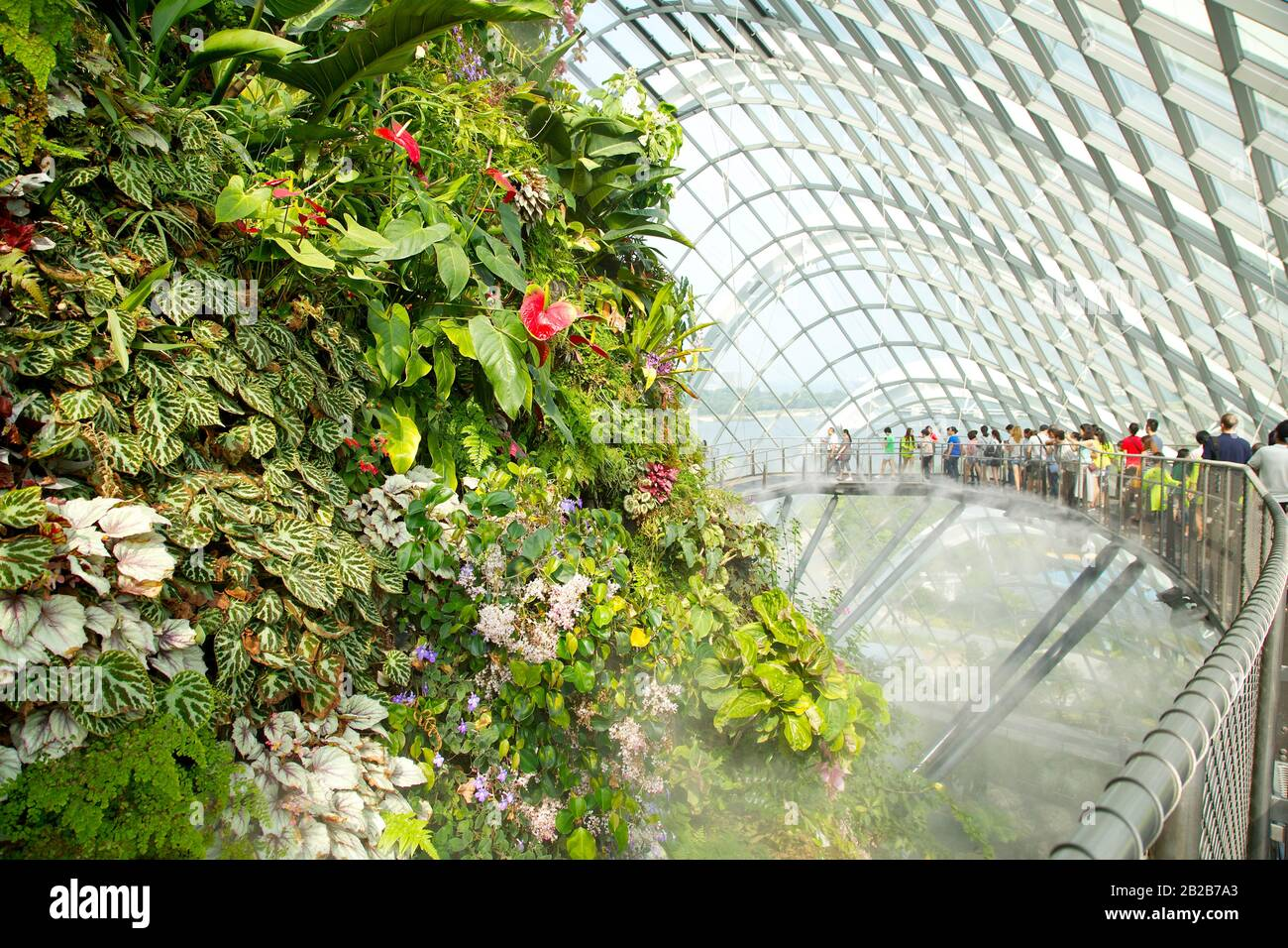 Botanic Gardens, Singapore Stock Photo