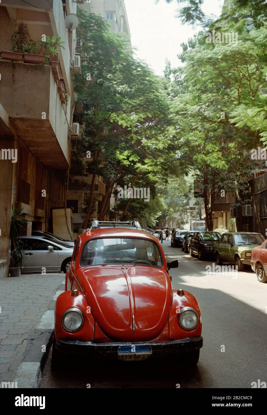 Travel Photography Old Fashioned Volkswagen Beetle In Garden City District Cairo In Egypt In North Africa Middle East Stock Photo Alamy
