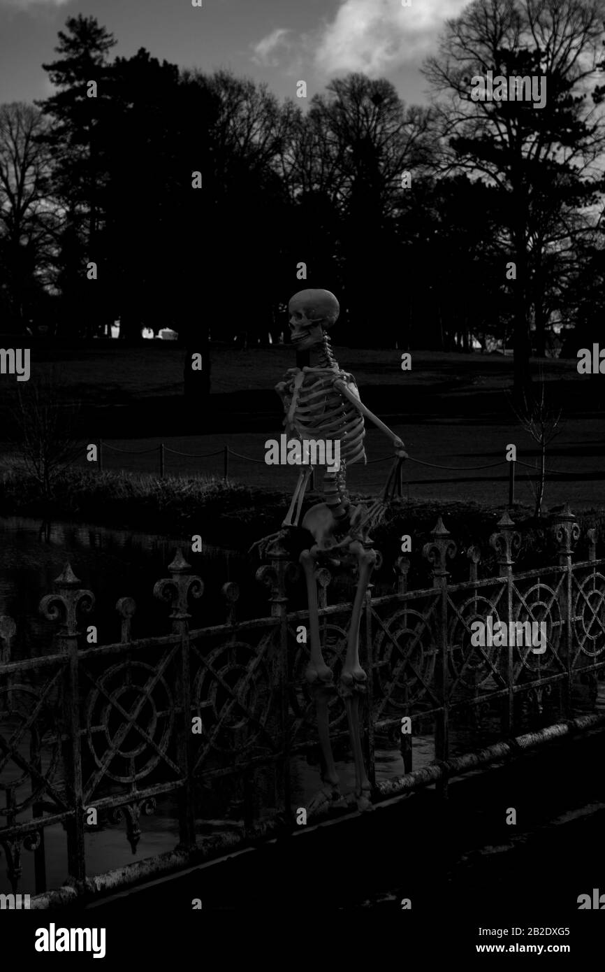 Worcester Halloween 2020 A Skeleton stood on a bridge, Droitwich Spa, Worcester, United