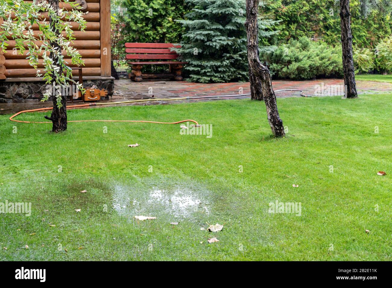 Garden bushes, tree and green grass lawn covered with water due to snow melting thaw and flash high water at spring. Natural disaster deluge flooded Stock Photo
