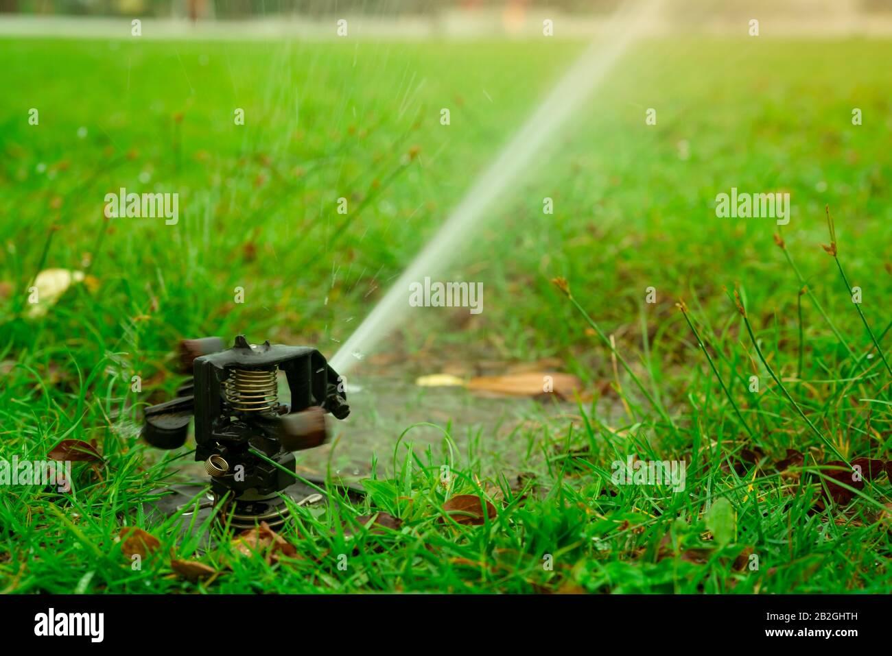 Best Lawn Sprinkler System