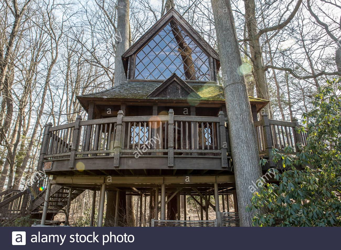 Canopy Cathedral Treehouse On Longwood Gardens Grounds This